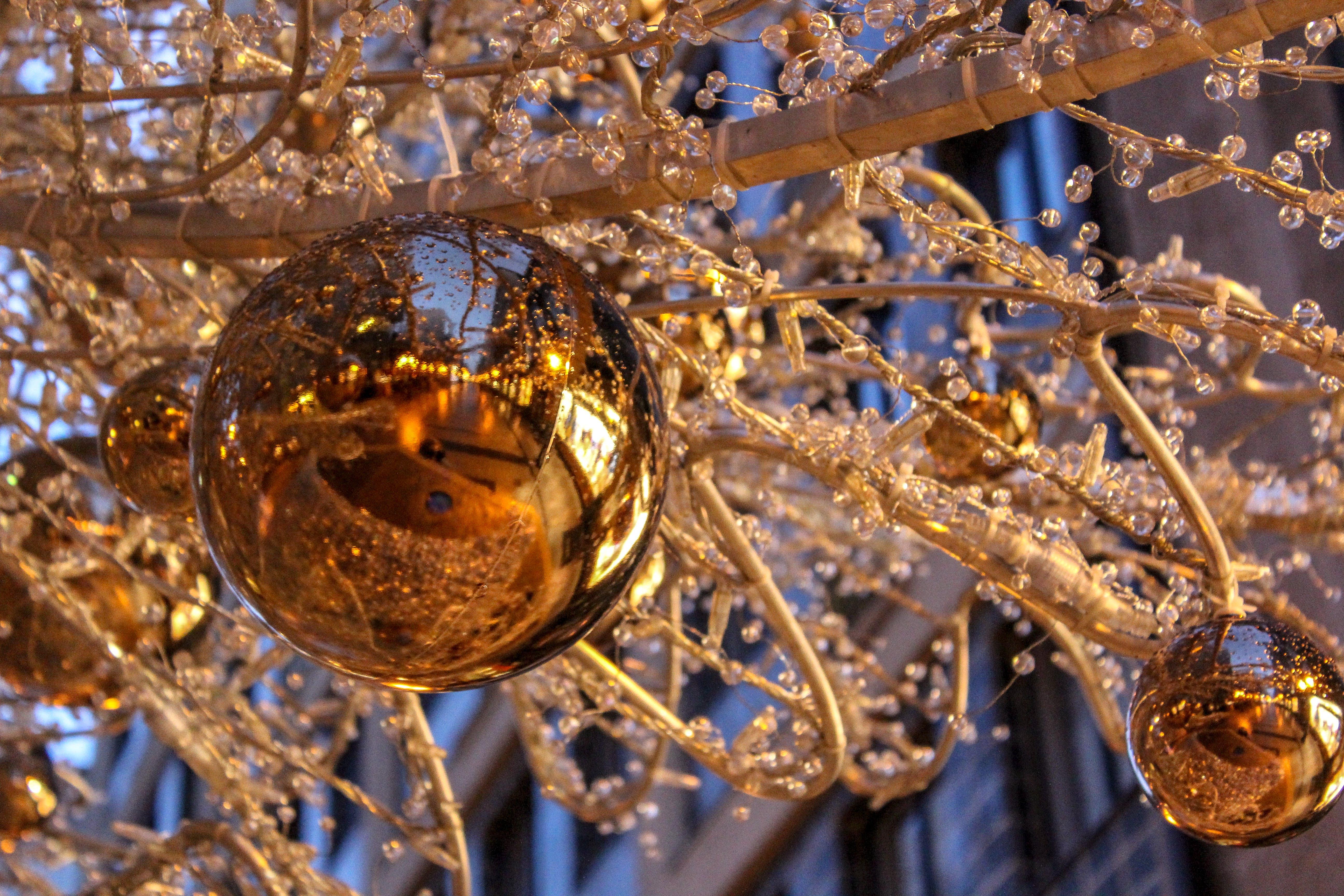 Free stock photo of #Christmas Tree#Budapest#Globe#Light