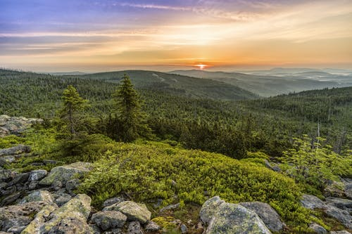 Gratis lagerfoto af bakker, bjerge, græs, grøn