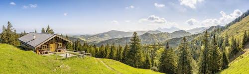 Ingyenes stockfotó fák, felhők, festői, fű témában