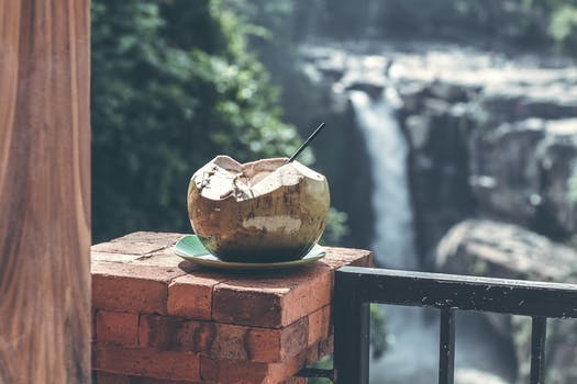 Free stock photo of food, healthy, landscape, vacation