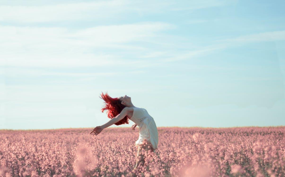 åkermark, blommor, dagsljus