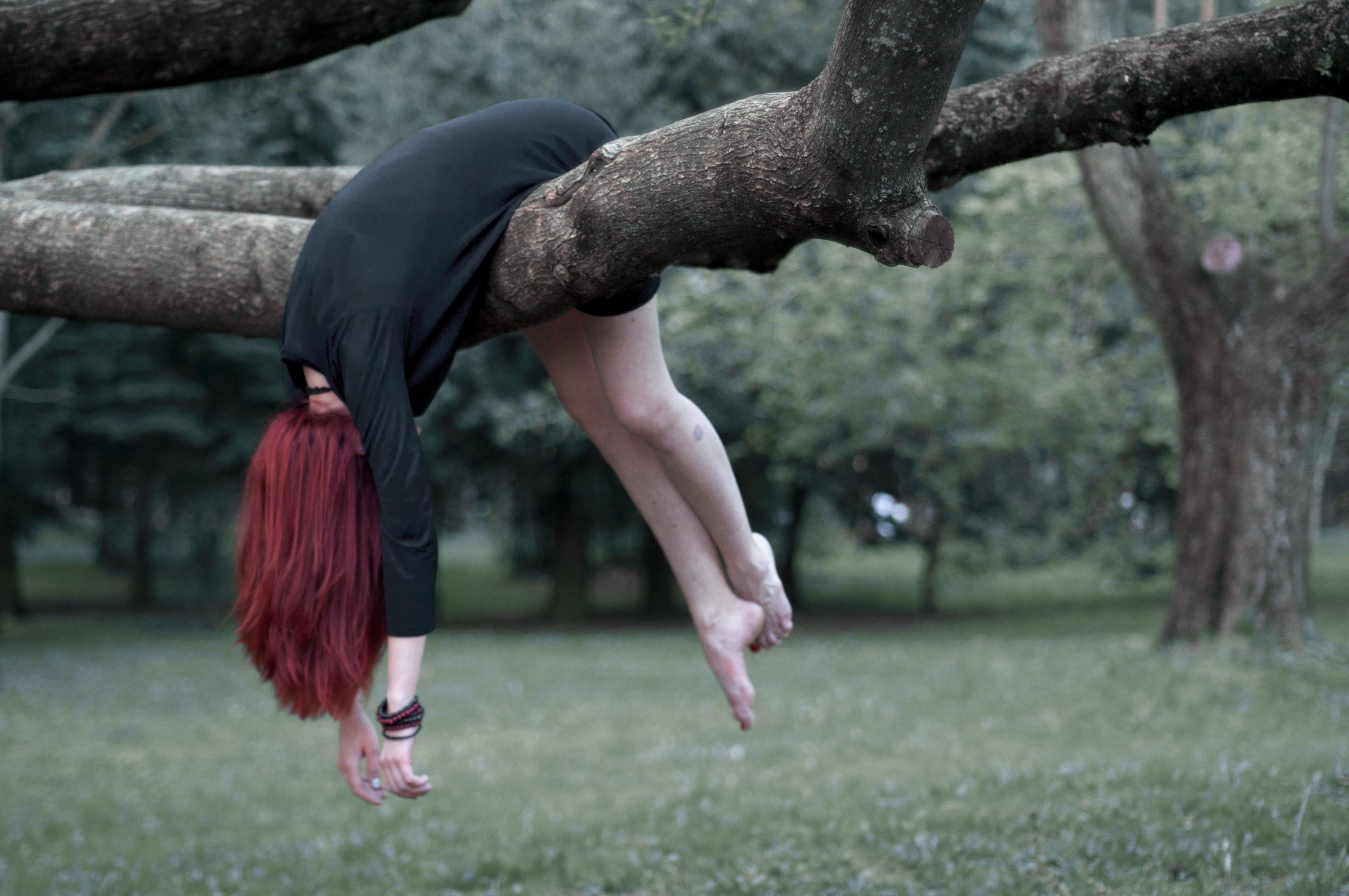 Woman Hanging on Tree Branch Outdoors