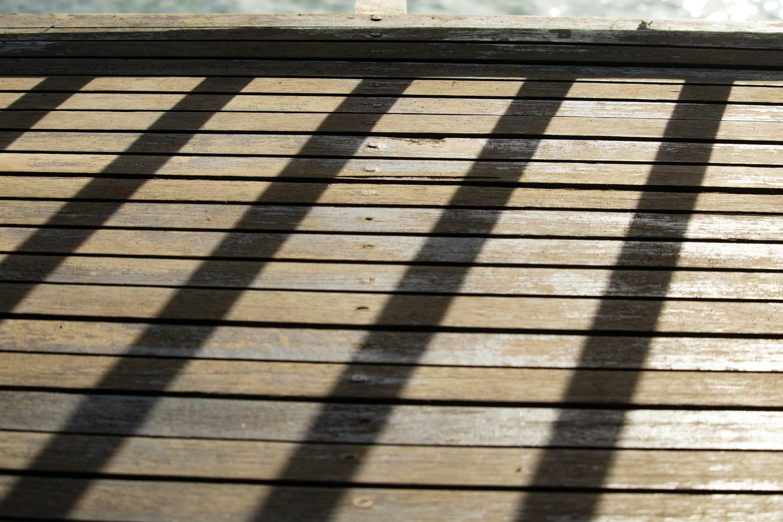 Foto profissional grátis de sombra de uma cerca