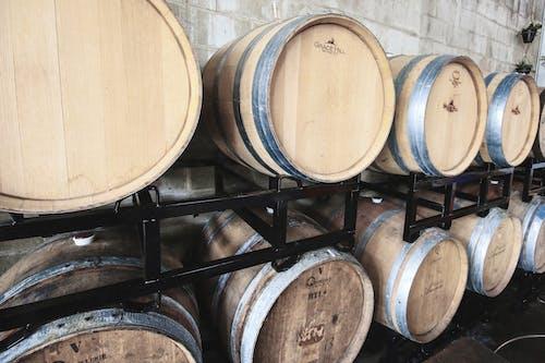 Gratis lagerfoto af tønde, vin, vin tønde