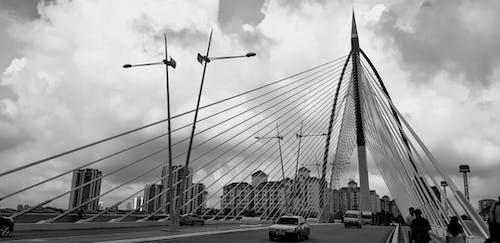交通系統, 人, 城市, 塔 的 免费素材照片