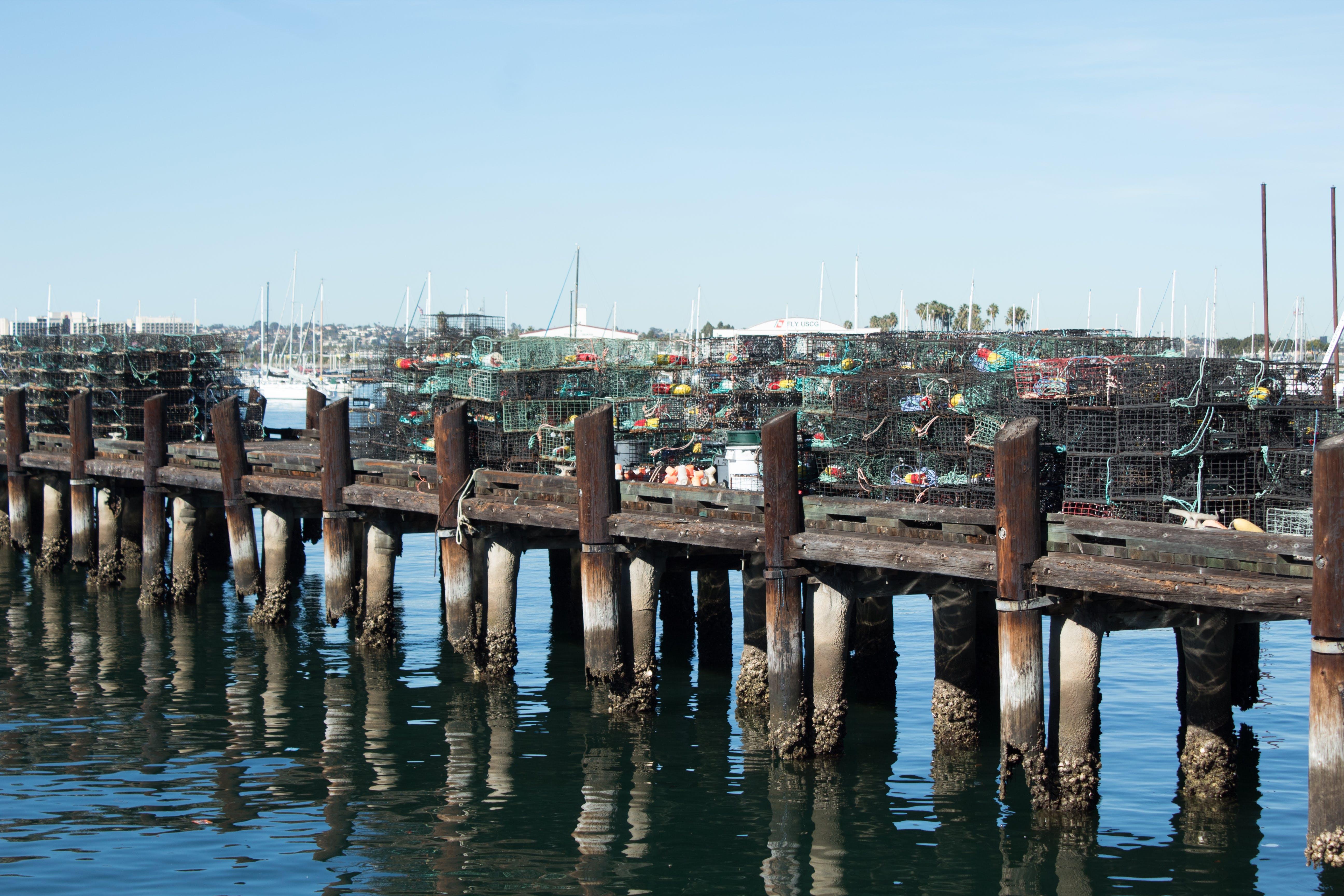 Free stock photo of fisherman, fishing, nets, pier