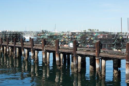Fotobanka sbezplatnými fotkami na tému mólo, rybár, rybolov, san diego