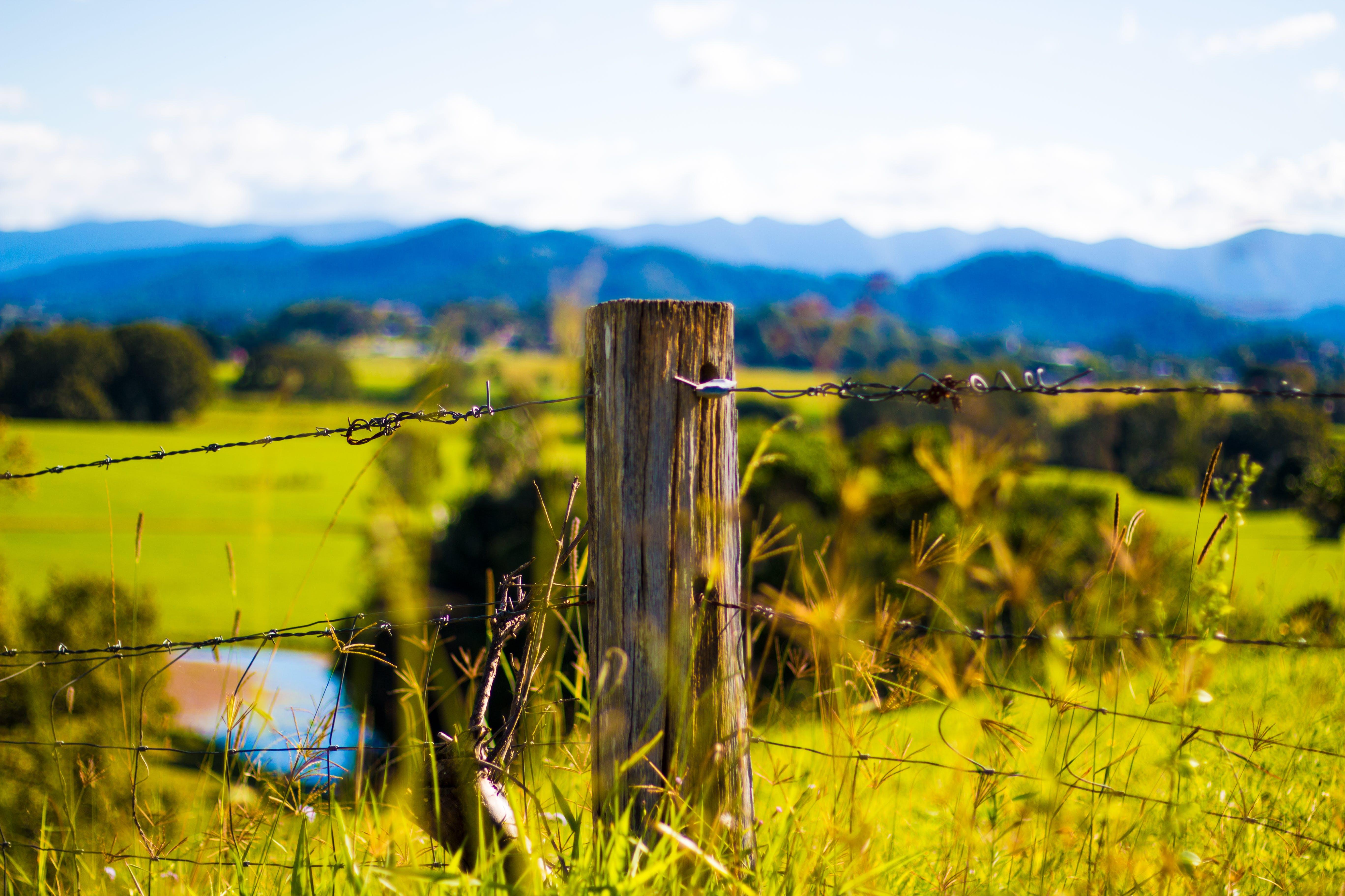 バーブワイヤー, ファーム, フィールド, フェンスの無料の写真素材