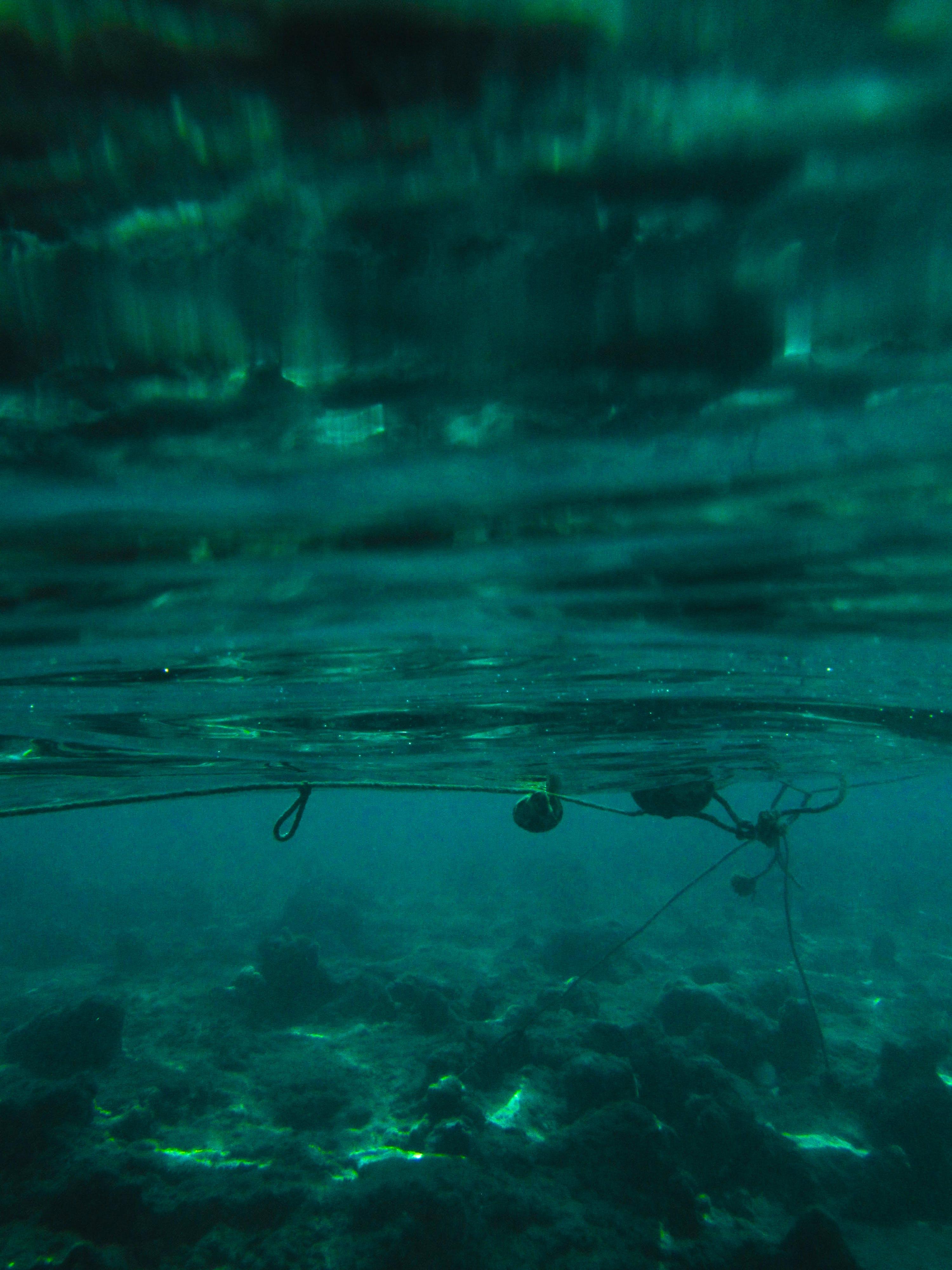 Free stock photo of blue water, deep sea, egypt, sea