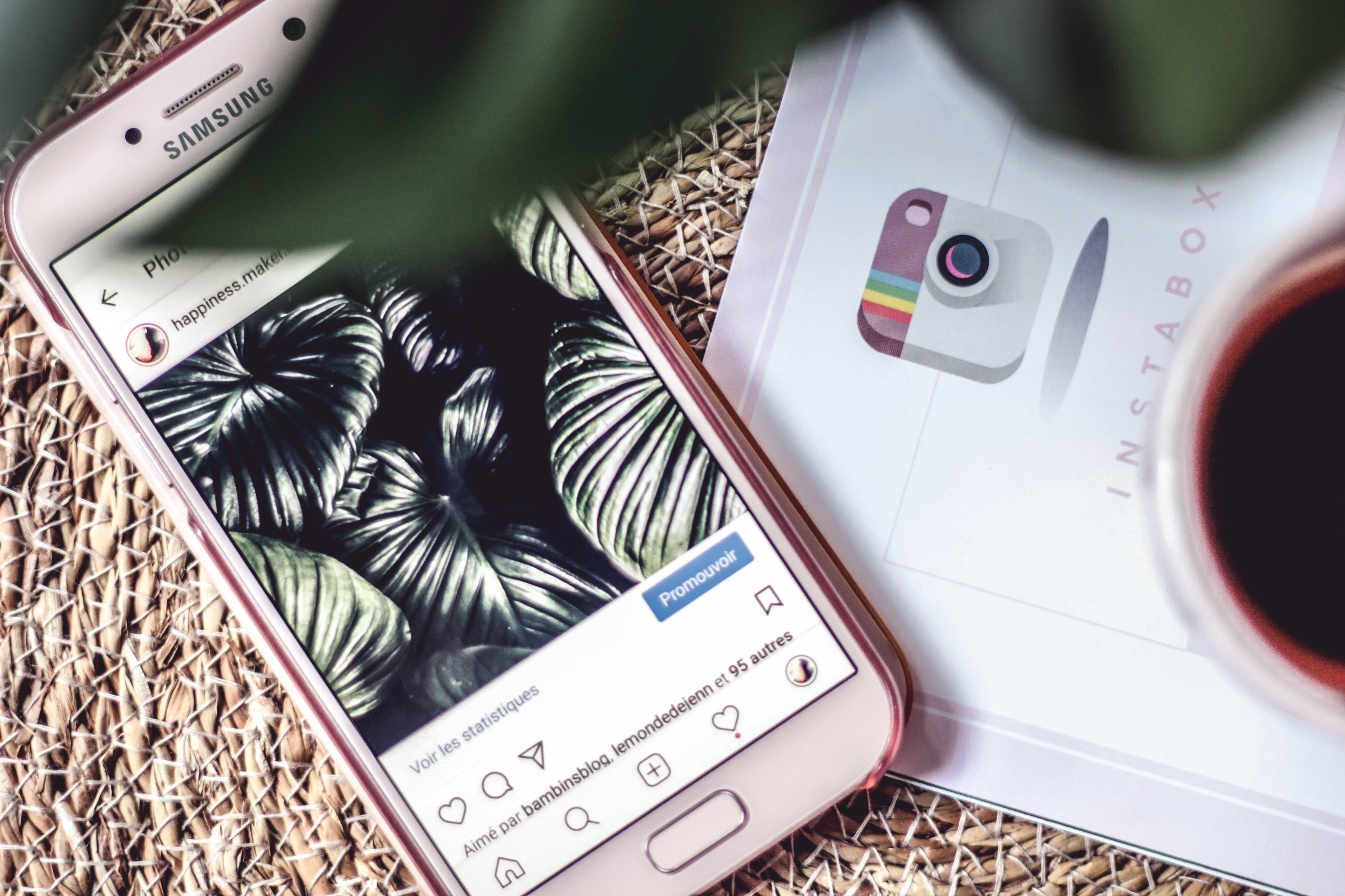 Základová fotografie zdarma na téma blog, blogueur, chlad, instagram