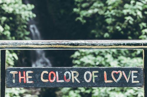 Gratis lagerfoto af dag, dagtimer, farverig, hjerte