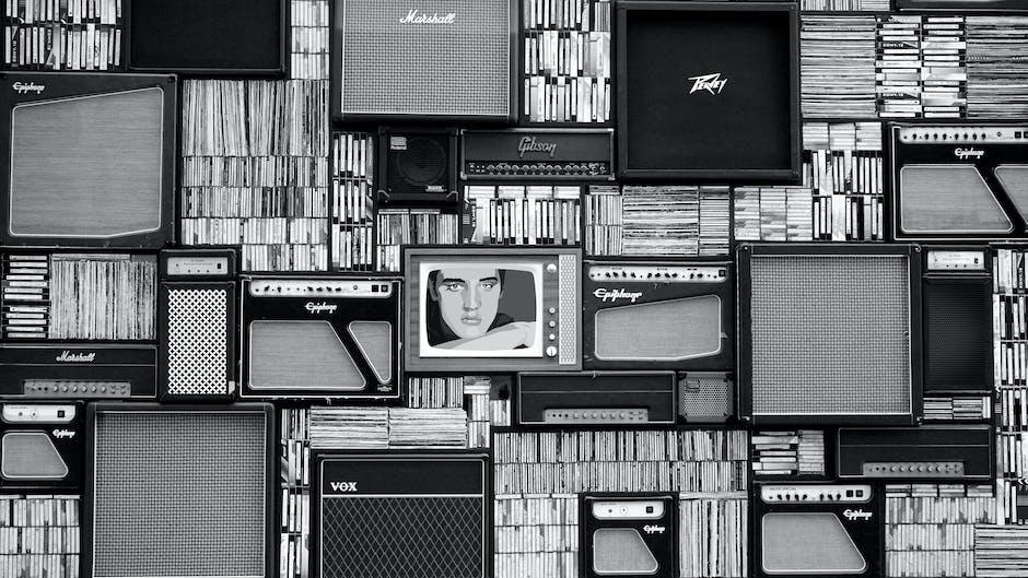 acoustic, amplifier, artist