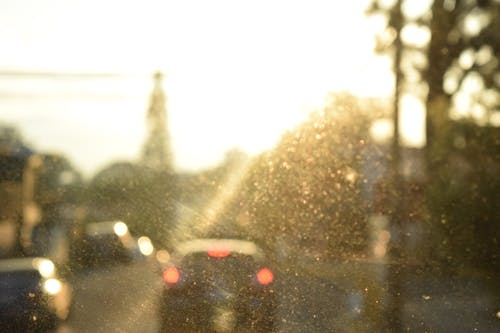 Free stock photo of car, city, noon, out of focus