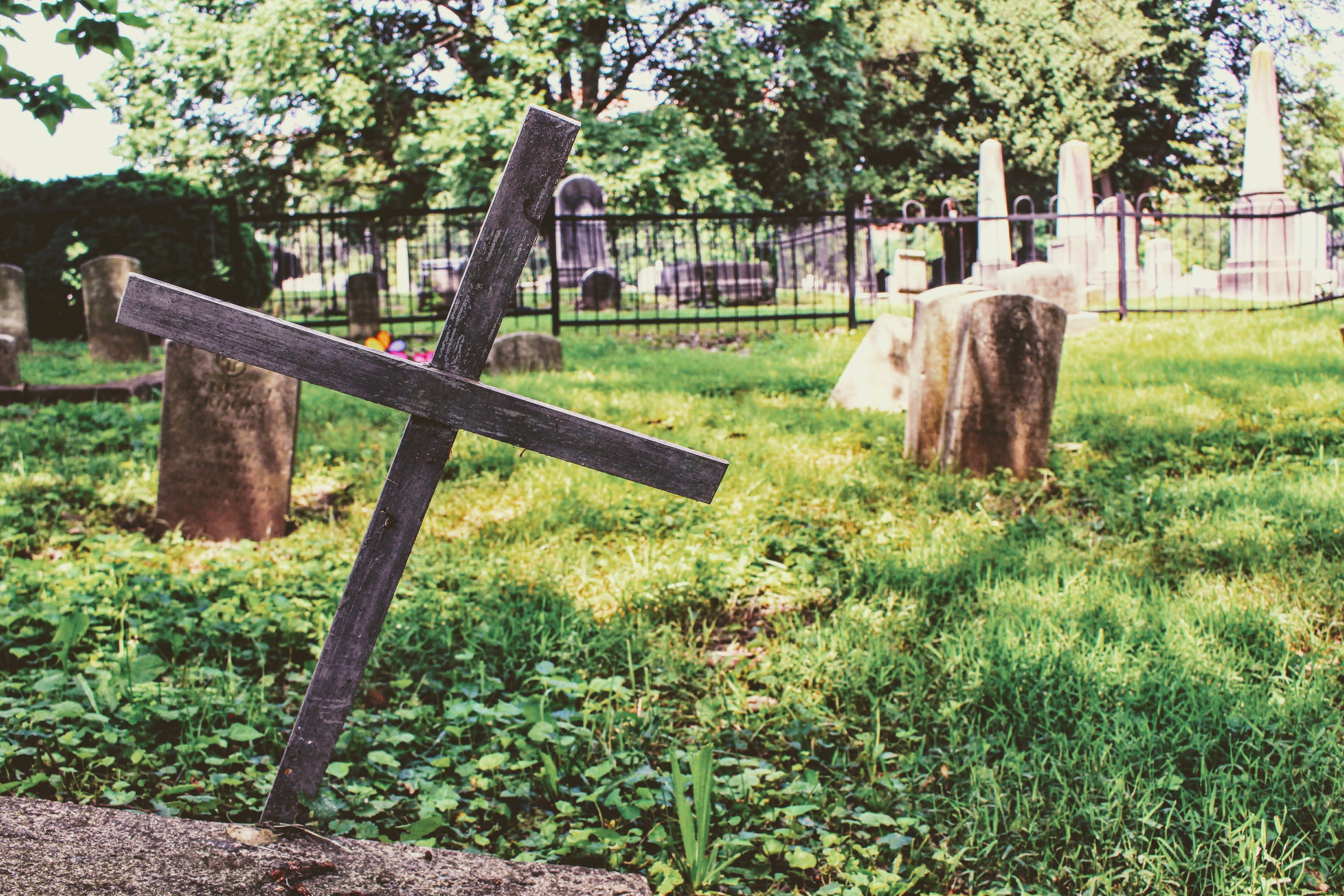 Photography of Wooden Cross on Green Grass