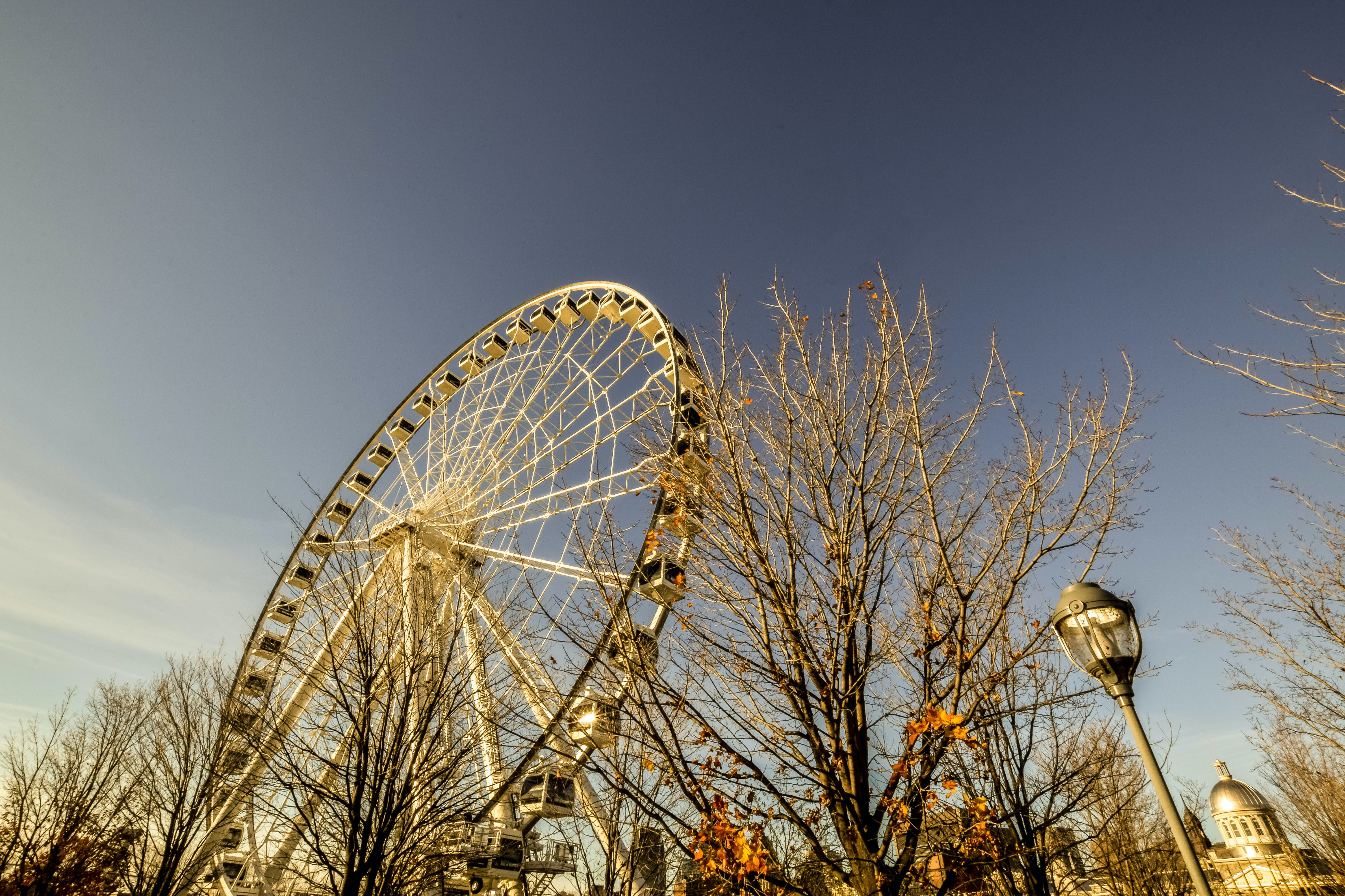 Free stock photo of big wheel, montreal, attaction