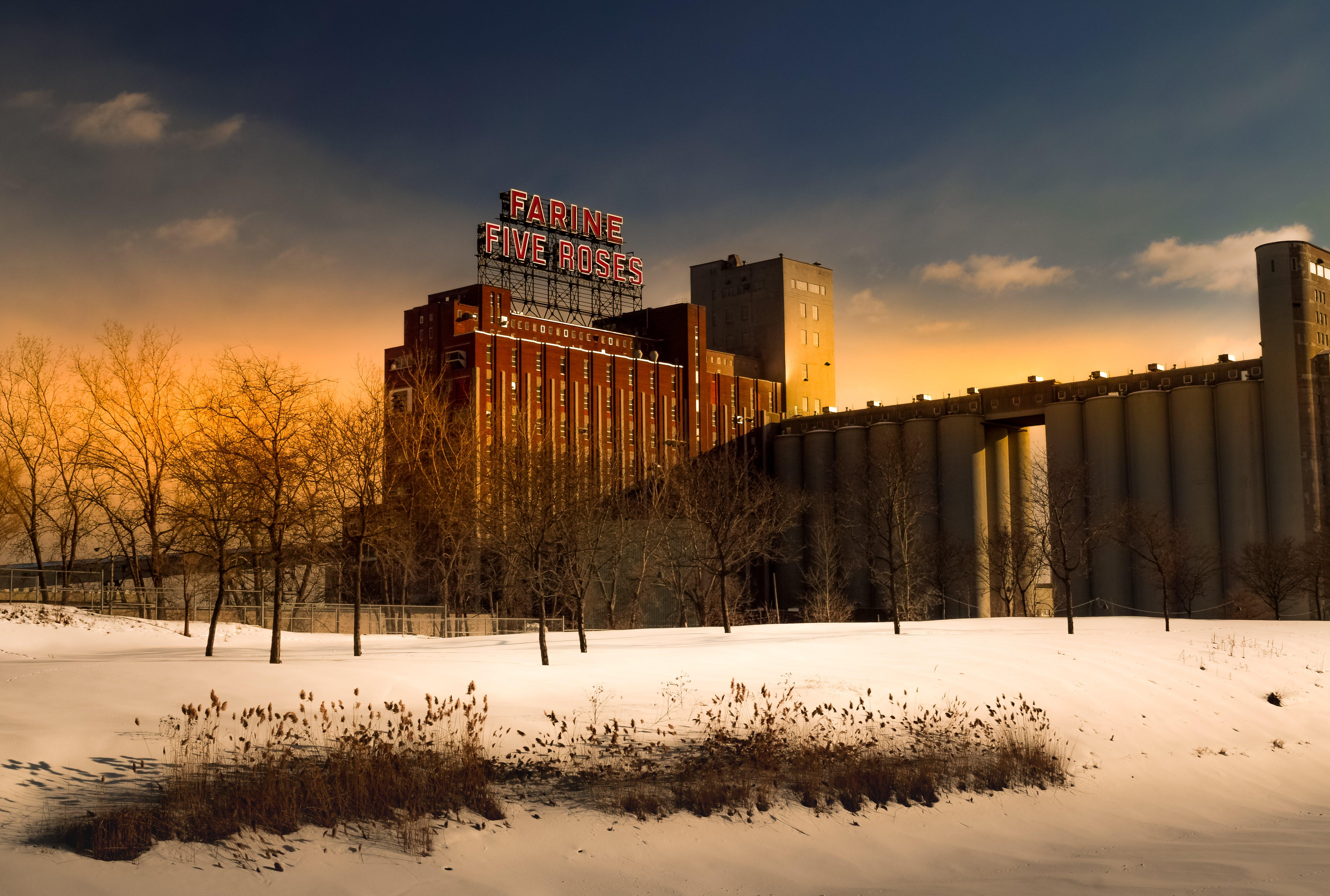 Gratis arkivbilde med arkitektur, dagtid, forkjølelse, frosset