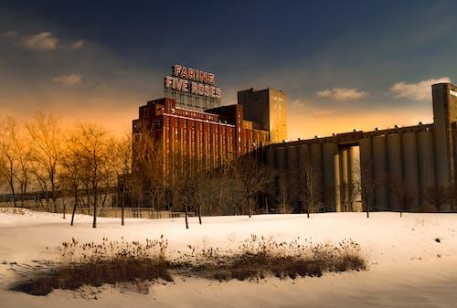 Immagine gratuita di alberi, architettura, cielo, congelando