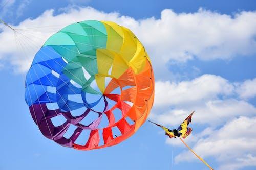 Gratis lagerfoto af drage, farve, farverig, himmel