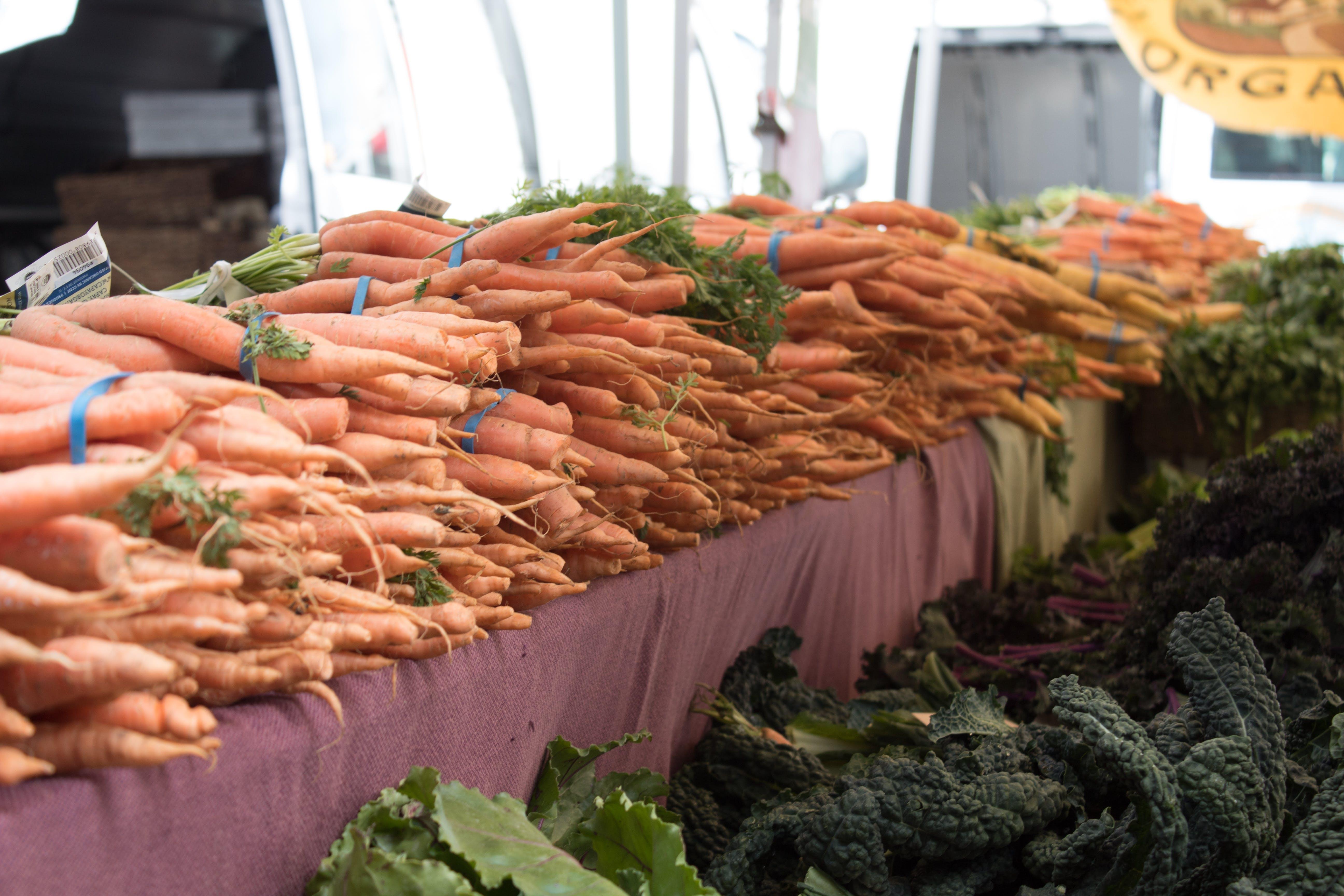 Free stock photo of carrots, farmers, farmers market, market