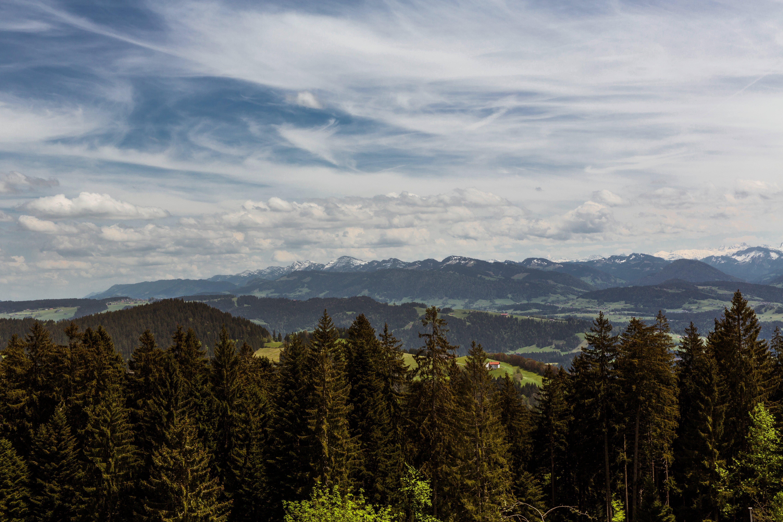 Základová fotografie zdarma na téma hory, krajina, les, malebný