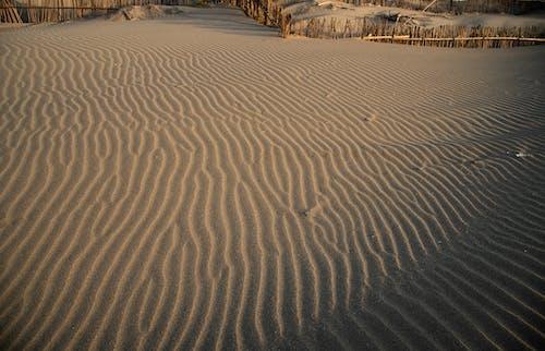 Δωρεάν στοκ φωτογραφιών με αμμόλοφος