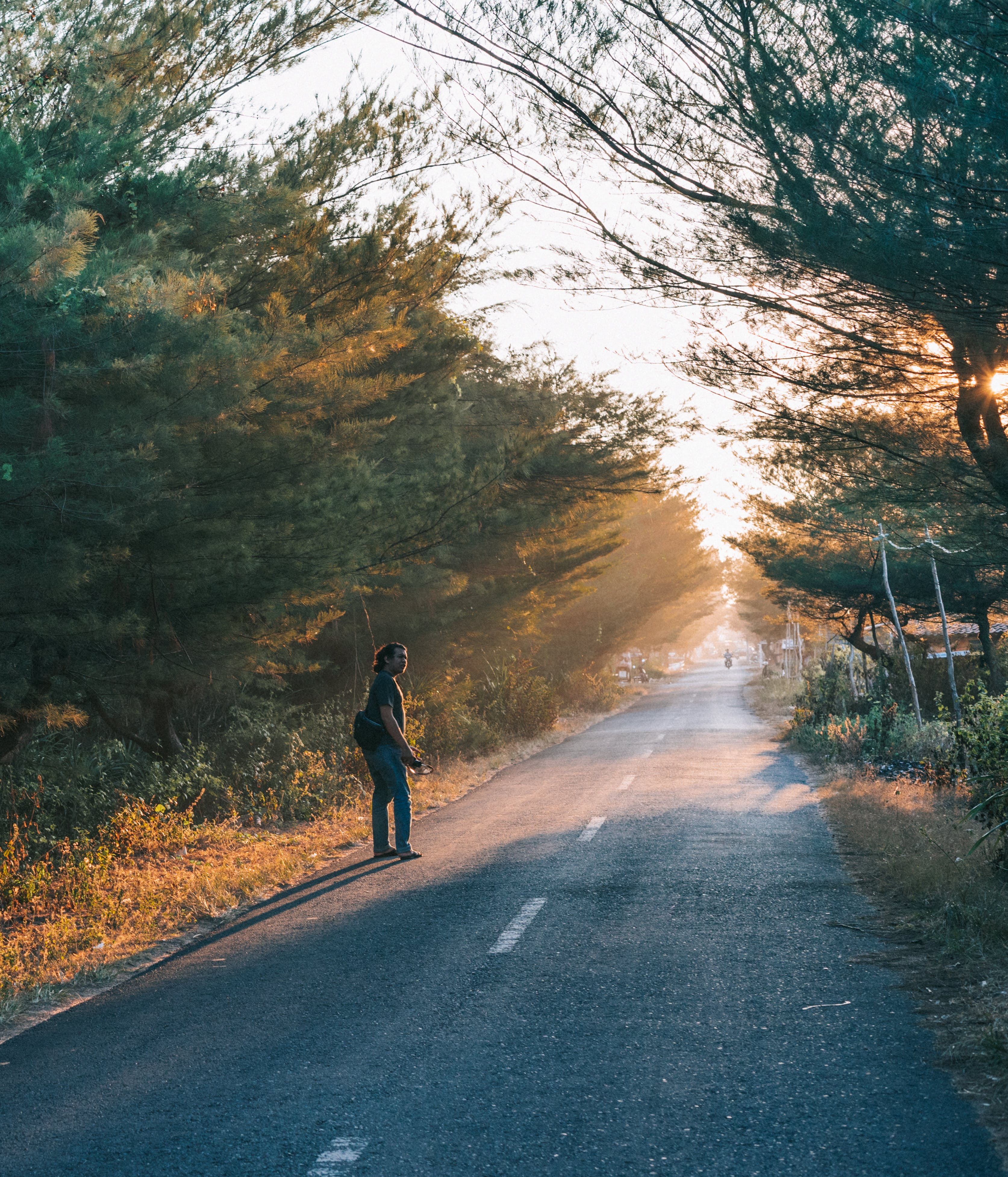 Free stock photo of road, dawn, landscape, nature