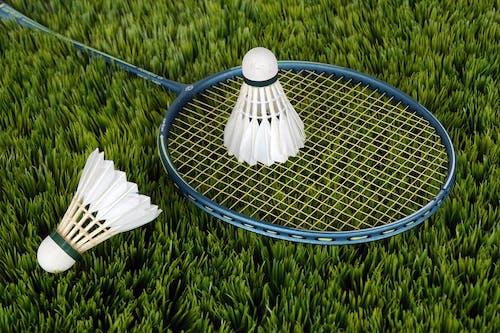 Imagine de stoc gratuită din badminton, iarbă, rachetă, shuttlecocks