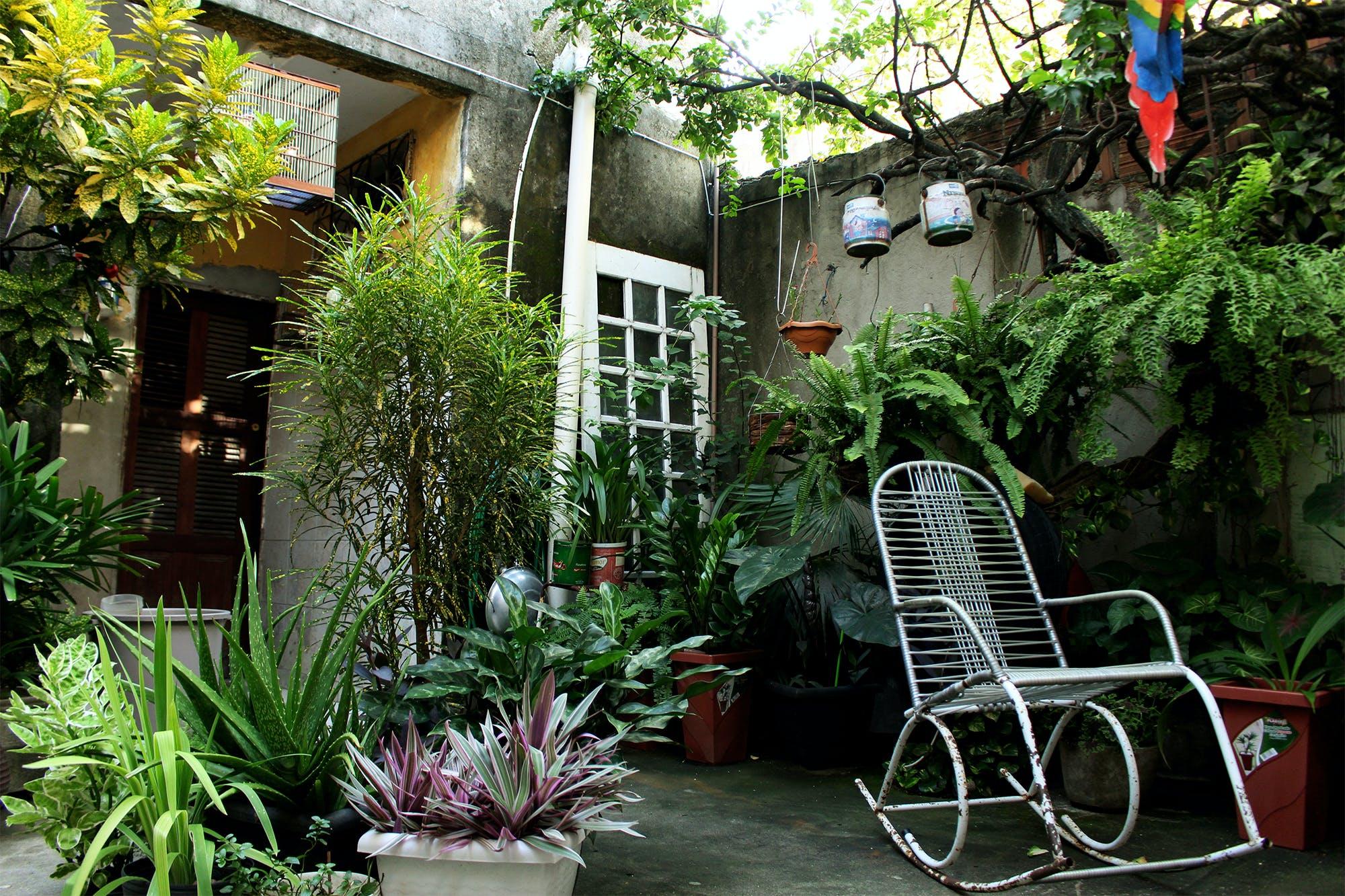 Free stock photo of #bird, chair, dark green, green