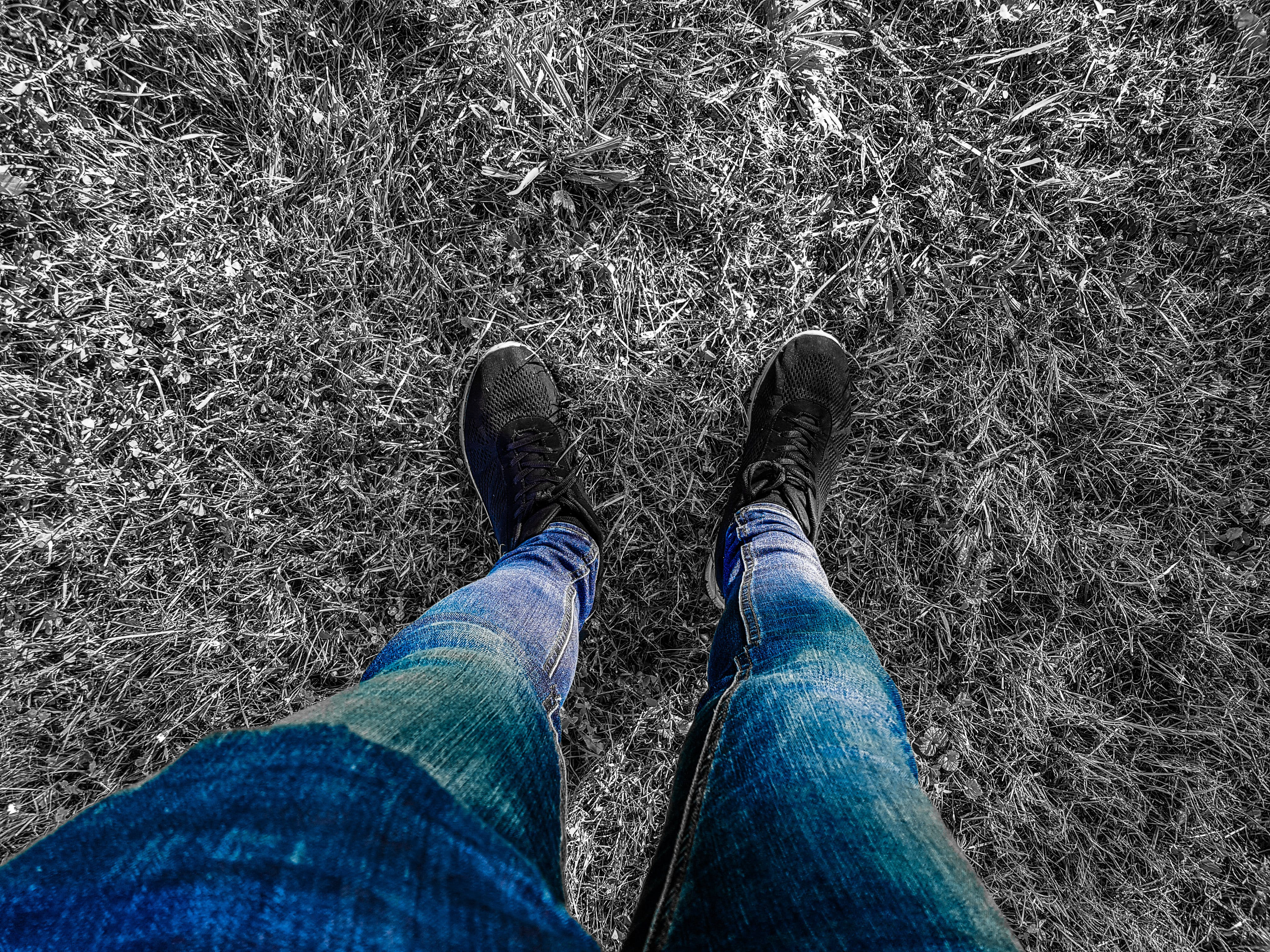Free stock photo of blue jeans, color, denim jeans, edited