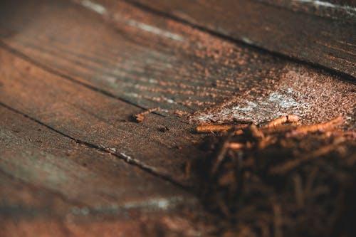 Základová fotografie zdarma na téma detail, detailní, detaily, dřevěný