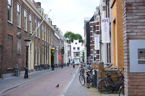 Foto d'estoc gratuïta de banderes, bici, carrer, coloms
