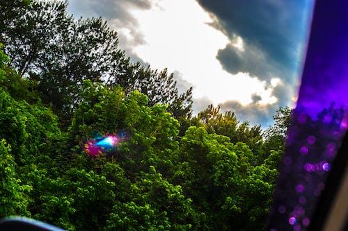 Fotobanka sbezplatnými fotkami na tému ľahký, obloha, príroda, prírodný
