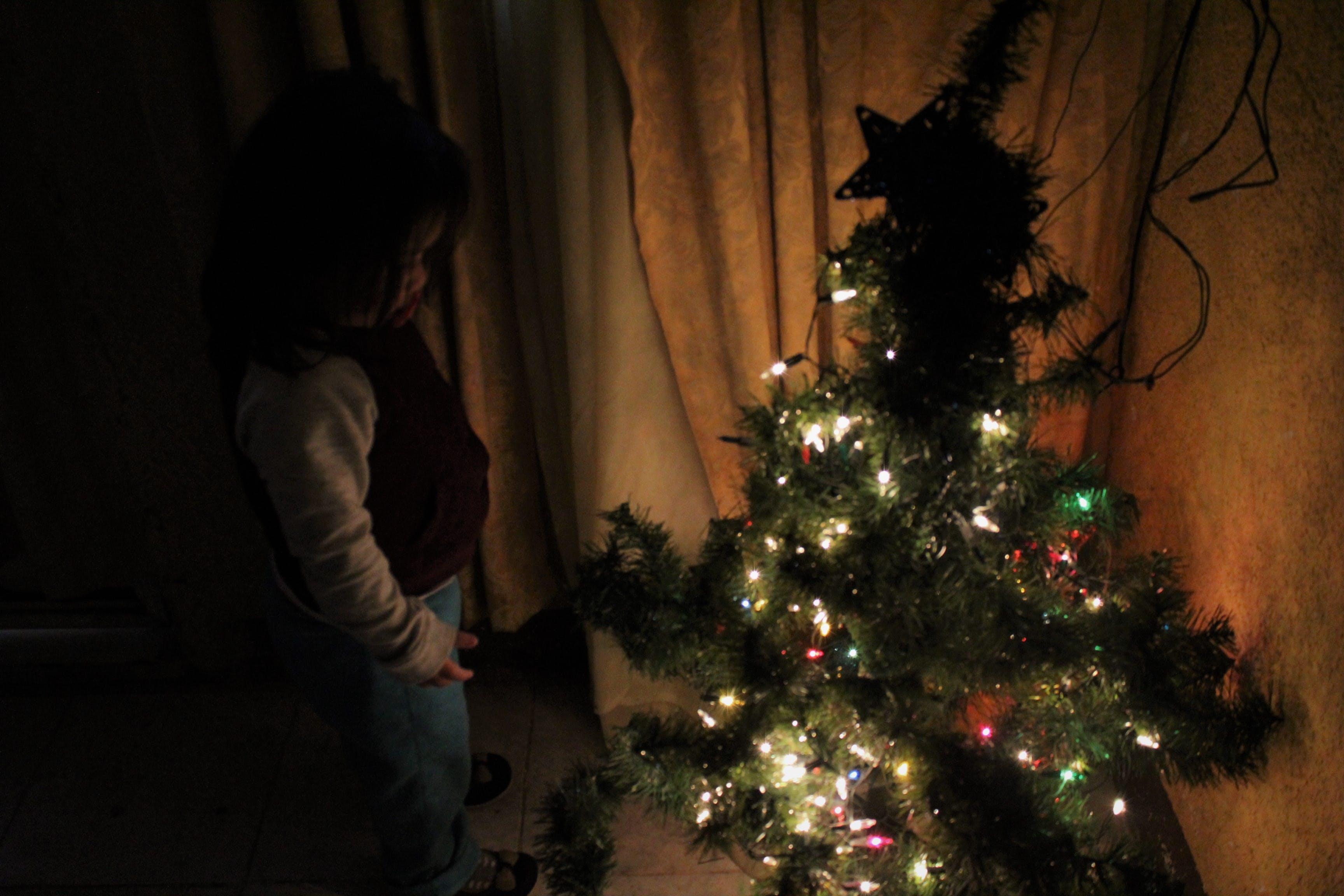 Free stock photo of #Tree, children, christmas, christmas lights