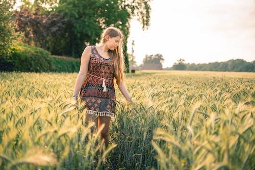 Ảnh lưu trữ miễn phí về cánh đồng, Cánh đồng ngô, Chân dung, con gái