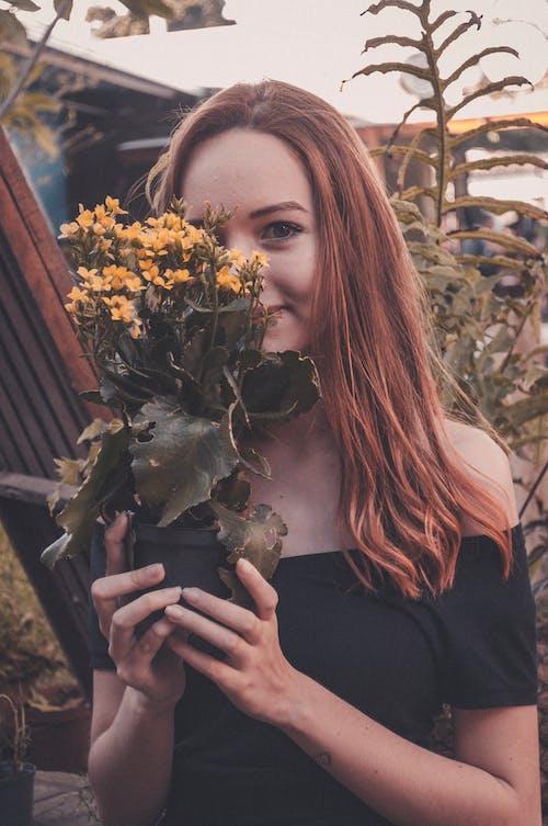 Foto stok gratis atraktif, bagus, belum tua, bunga