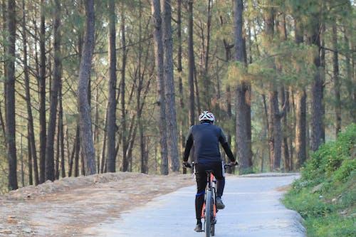 早朝, 自転車の無料の写真素材