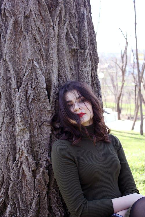 Foto d'estoc gratuïta de arbre, aspecte dramàtic, cabells arrissats, dramàtic