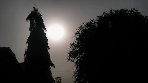 Free stock photo of nature photography, Nigeria, sun