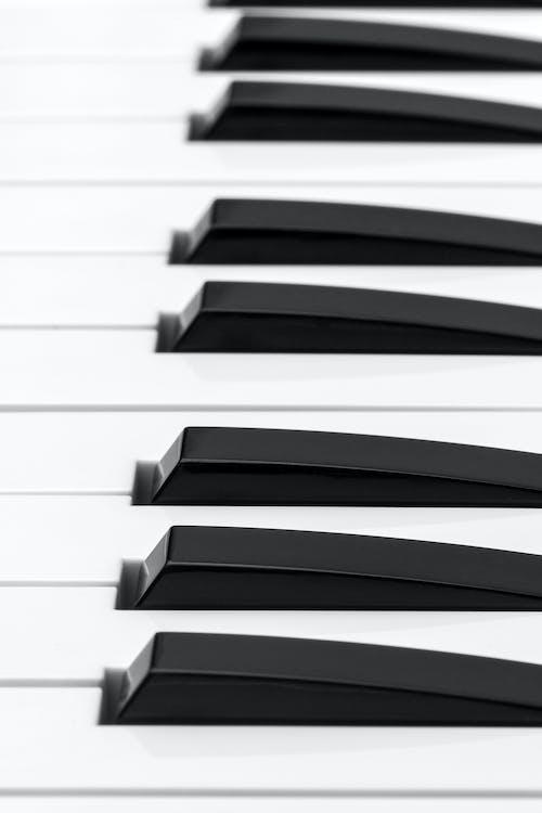 alat musik, gading, hitam dan putih