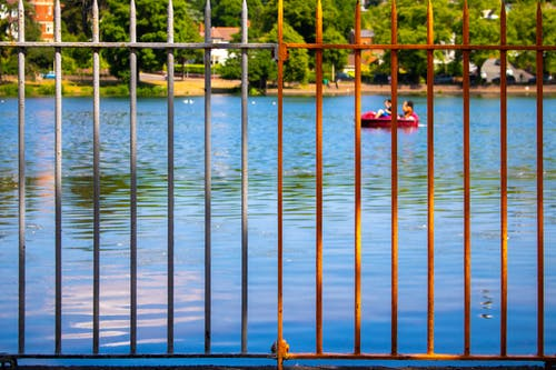 Free stock photo of fence, pattern, summer, water
