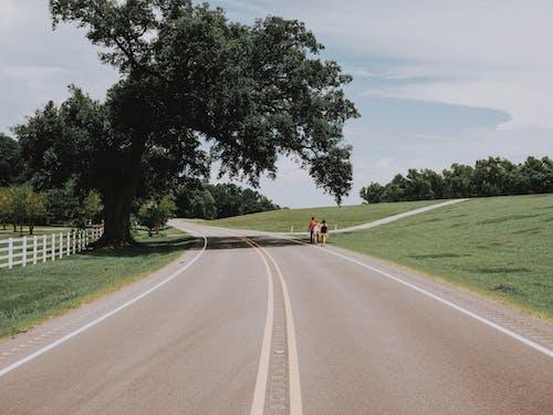 Kostnadsfri bild av asfalt, dagsljus, gående, människor