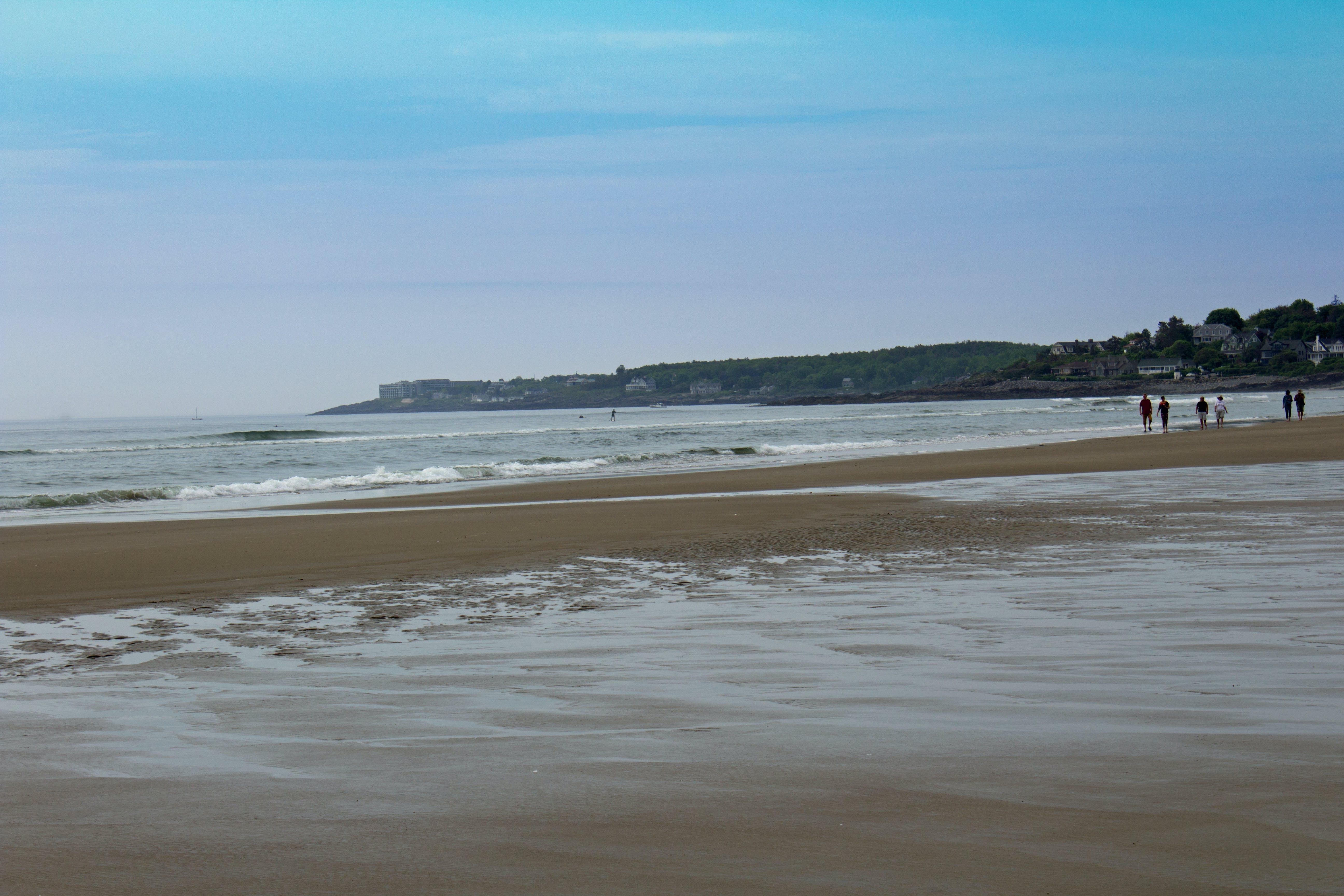 Free stock photo of beach, maine