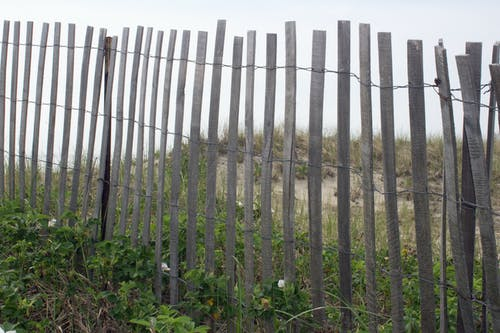 Free stock photo of beach, fence, sand