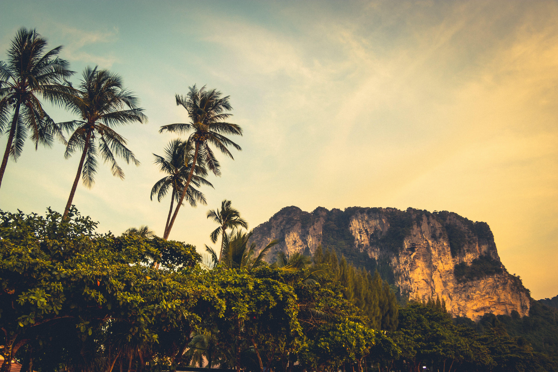 island, Krabi, landscape