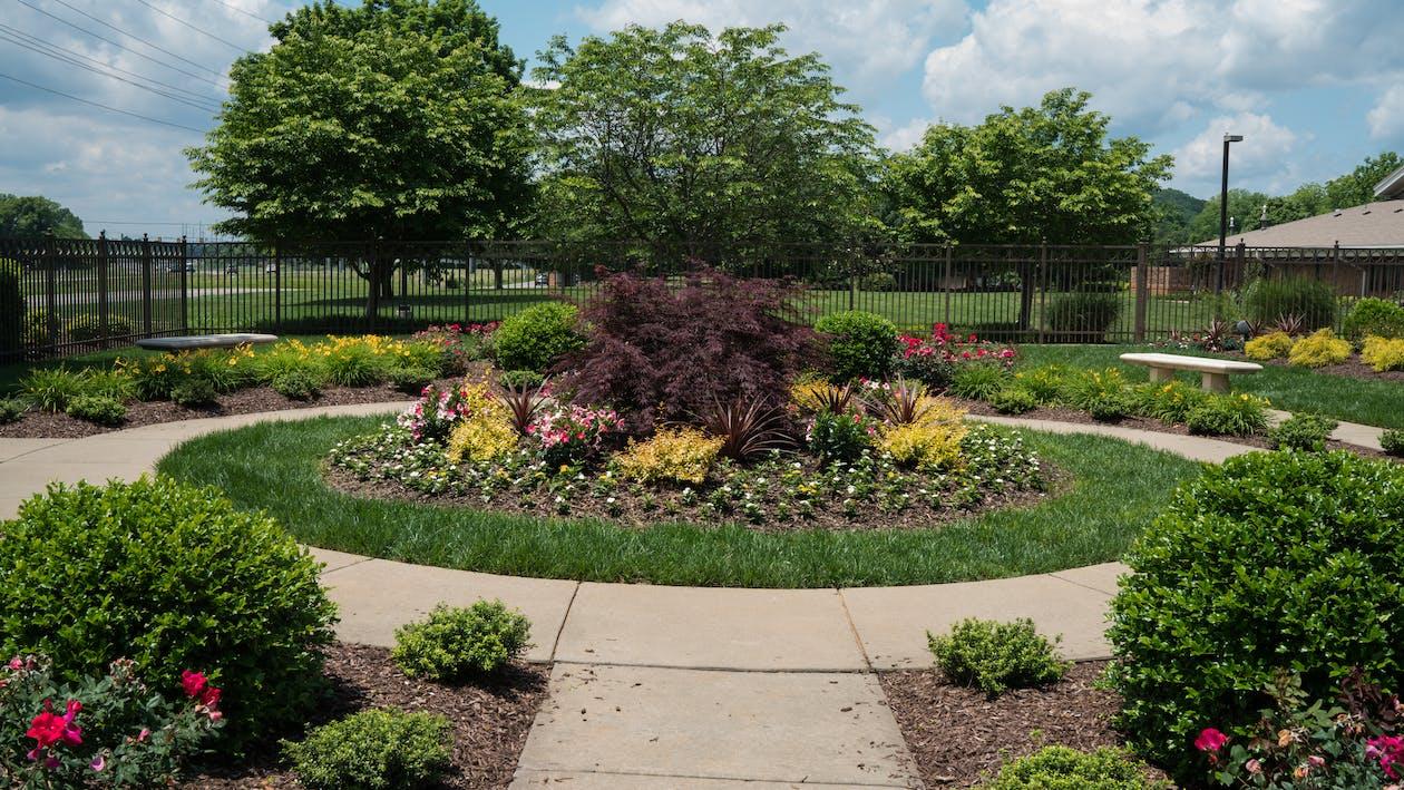 Free stock photo of garden, nashville