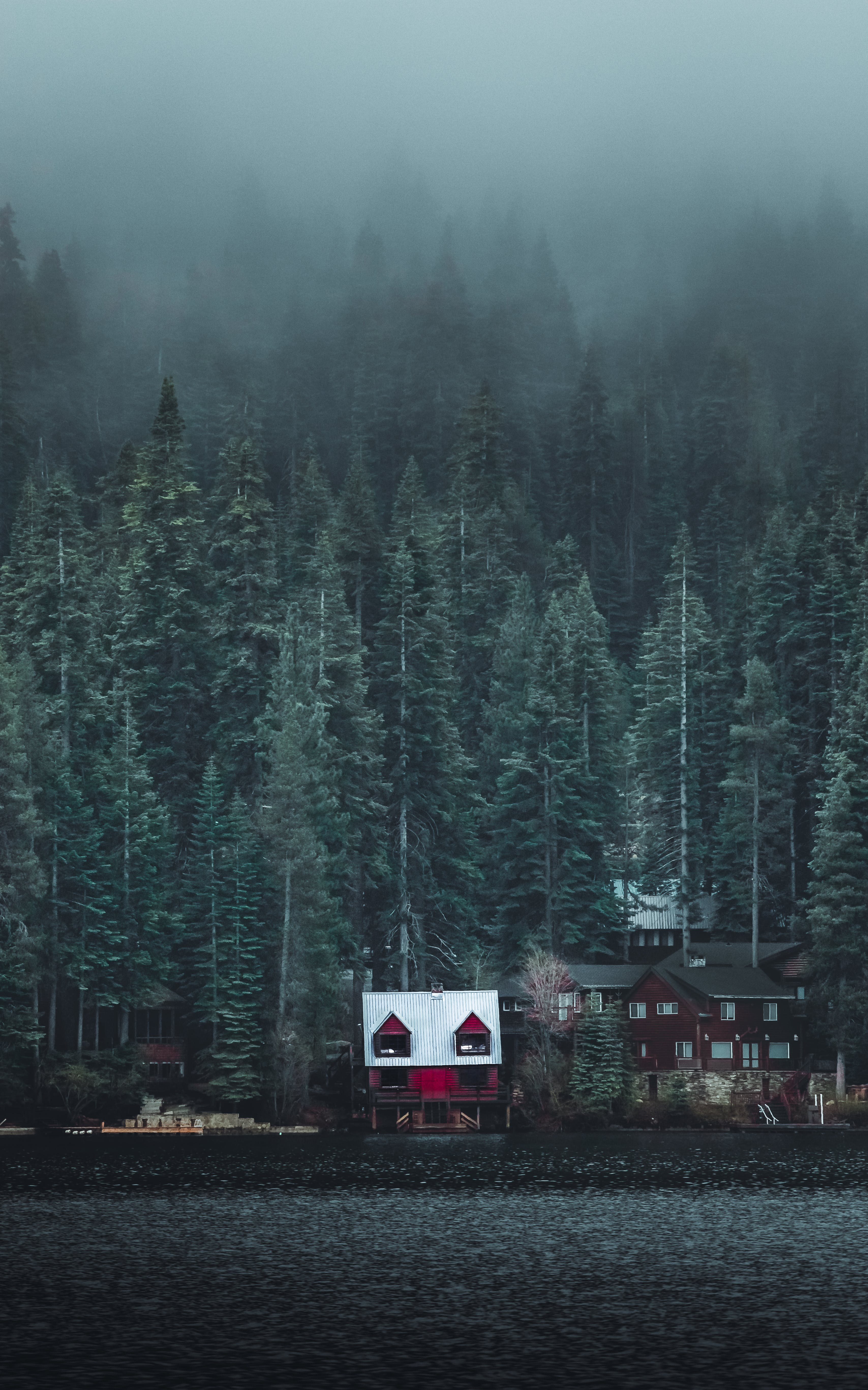 White and Red Wooden Cabin Near Forest