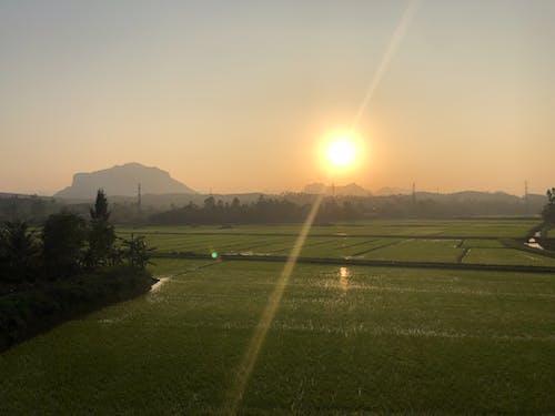 Základová fotografie zdarma na téma sluneční záře