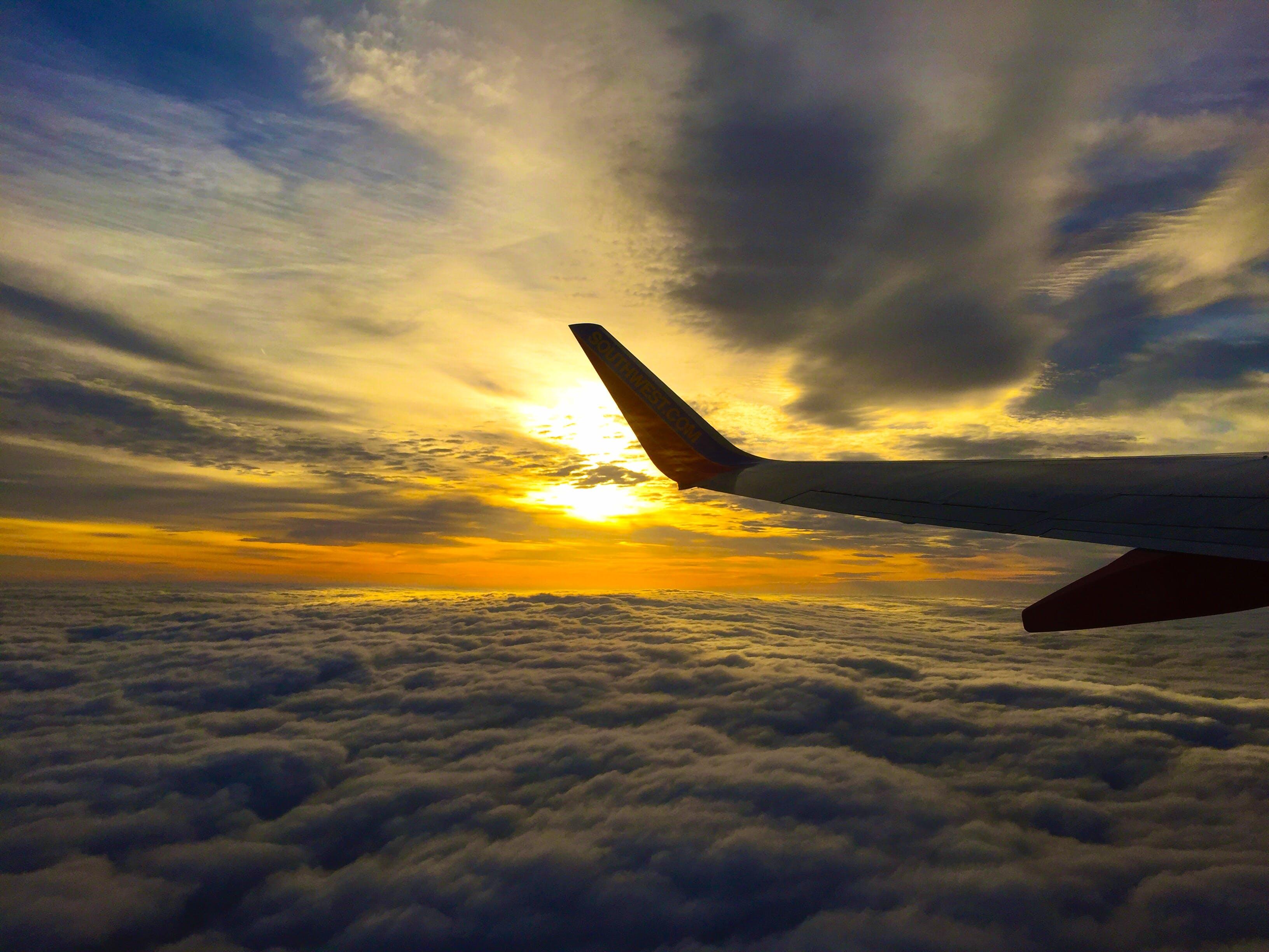 Foto stok gratis awan, cahaya, Fajar, kapal terbang