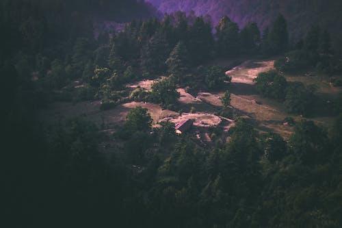 Základová fotografie zdarma na téma barvy, denní světlo, hory, krajina