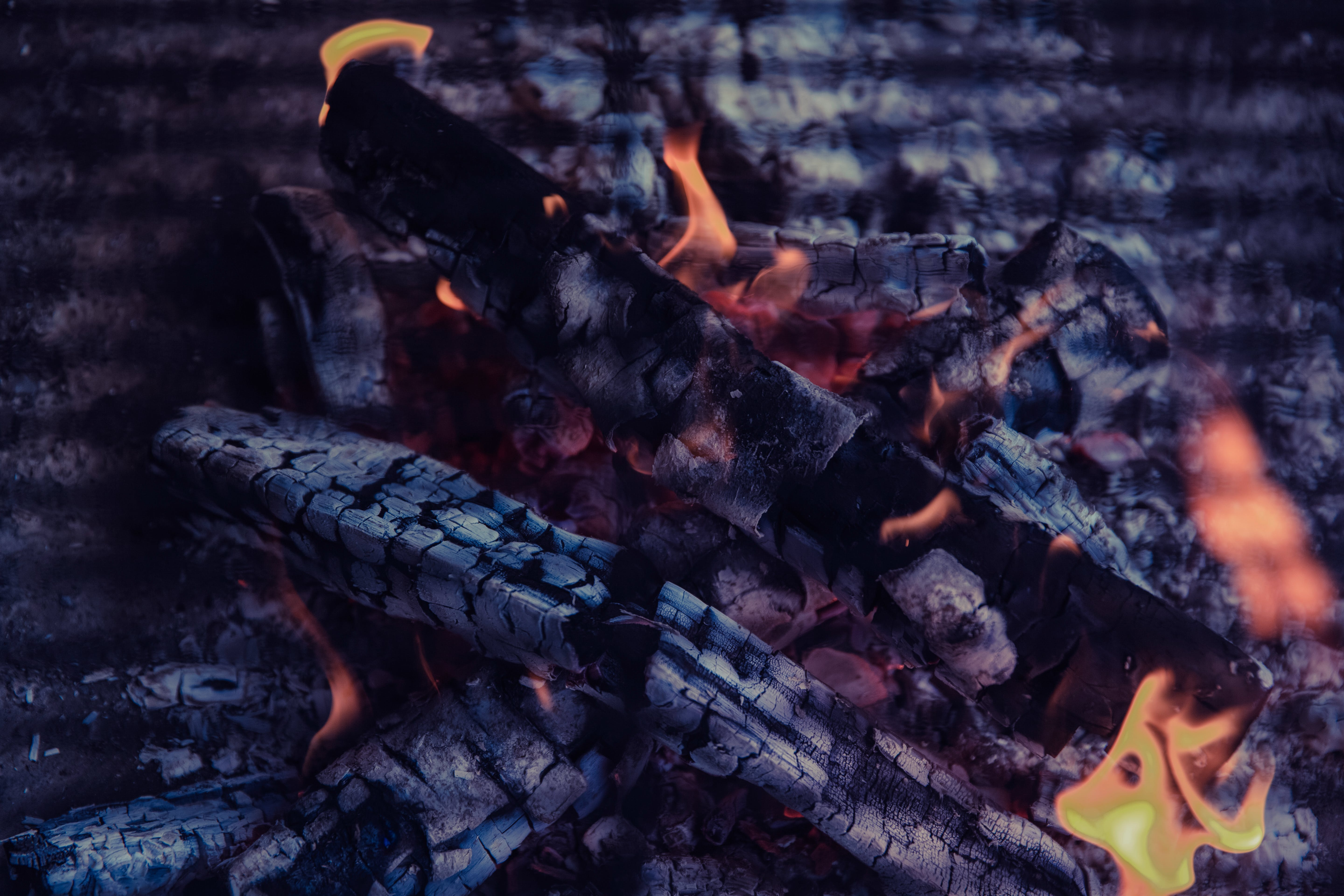 Free stock photo of firewood, fire, campfire, flame